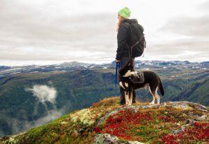 Rekreacyjne chodzenie po górach